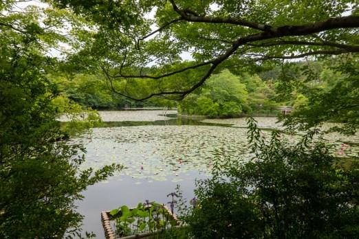 2019-05-30 - Ryoan-ji-1