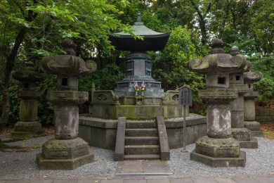 2019-06-08 - Shiba park-8