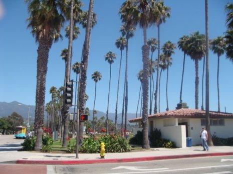 Palmen entlang der Strandpromenade in Santa Barbara
