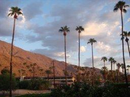 Blick aus dem Hotelzimmer in Palm Springs