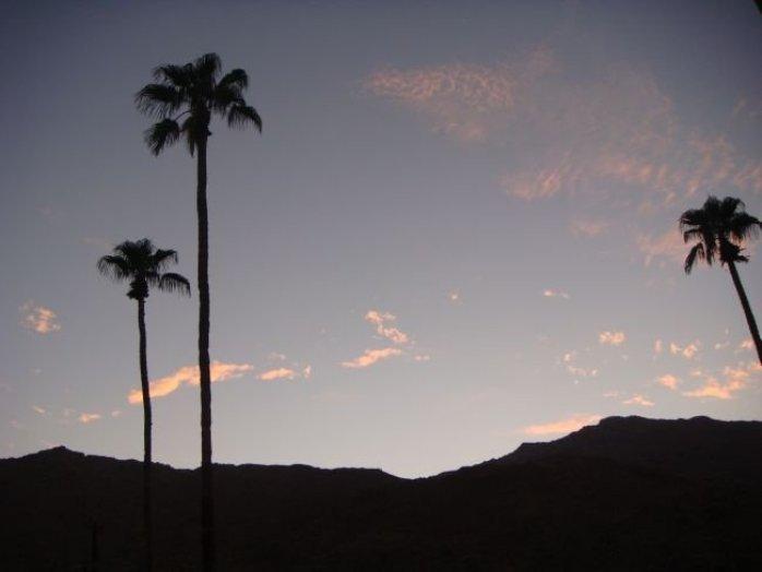 Sonnenuntergang in Palm Springs