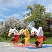 Sivananda Yoga Zentrum 4