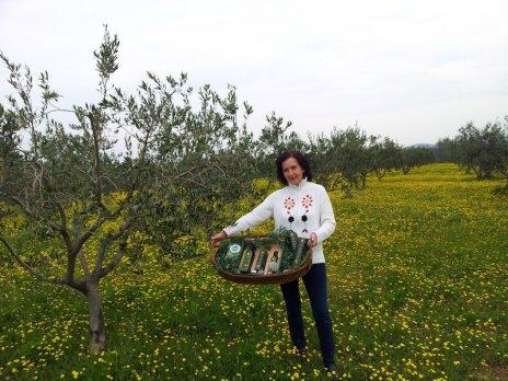 Bio-Olivenölfarm 8