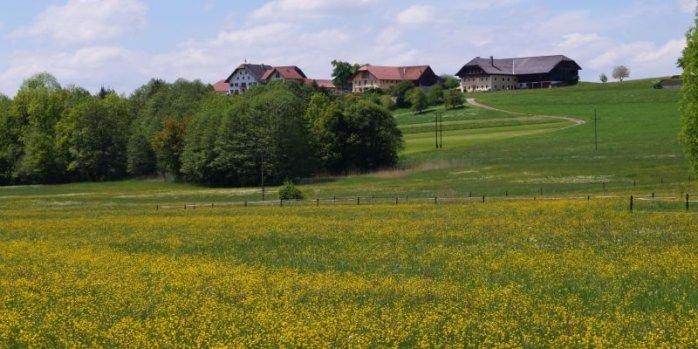 Salzburger Seenland 020