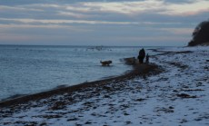 Ostsee Strandspaziergang