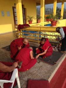 Buddhist monks (2)