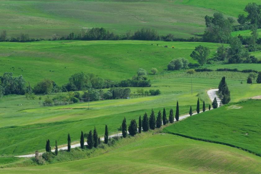 Paesaggio E Agricoltura