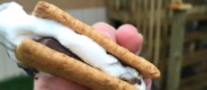 Getaway at KOA Toronto West - smore closeup