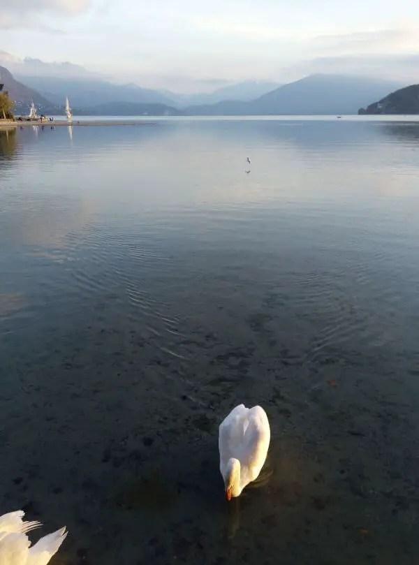 Un gros plouf dans le lac d'Annecy