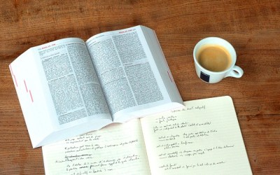 Les différents statuts juridiques pour le lancement de votre activité