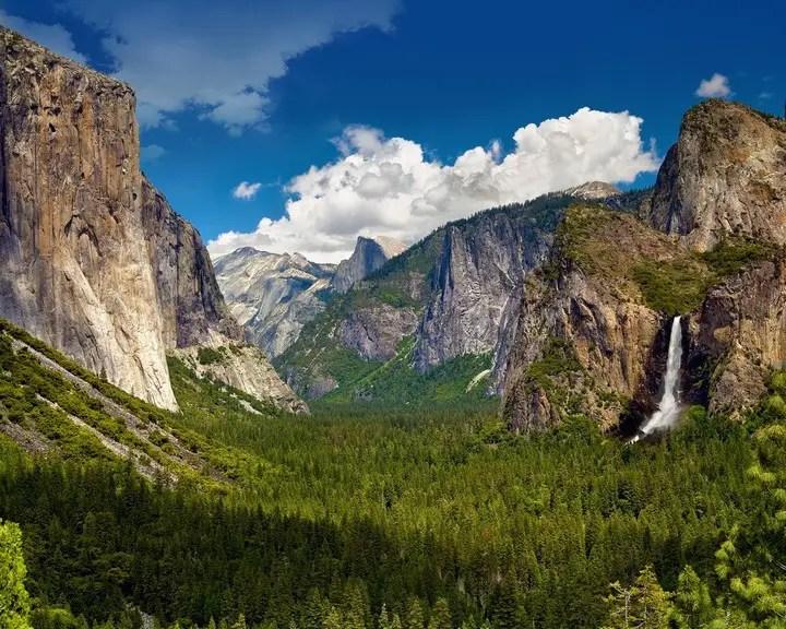 Yosemite National Park (2)