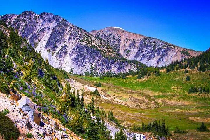 mount-rainier-national-park