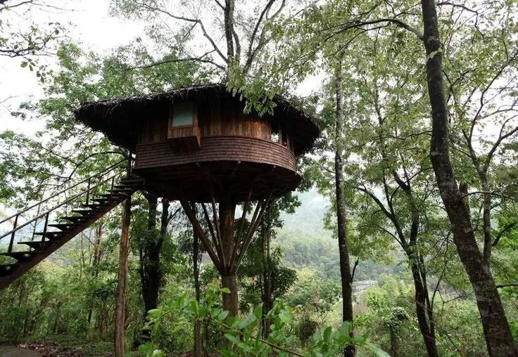 tree house athirapally, india