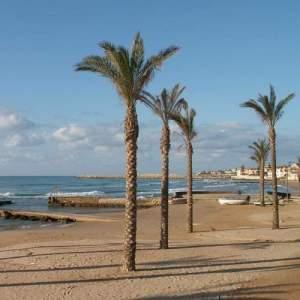 Spiaggia di Marina di Ragusa con palme