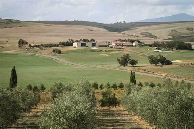 Gabrielskloof farm
