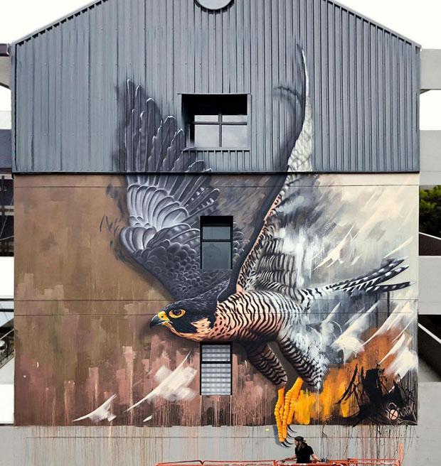 Graffiti in Johannesburg of a falcon in flight by street artist SonnySundancer