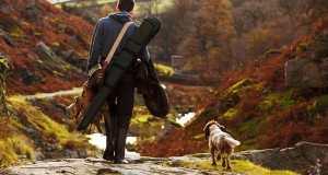 bird hunter with dog