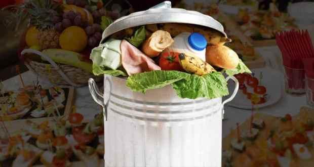 Food waste in a garbage bin