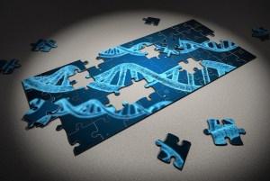 Mixing of human DNA