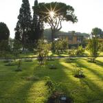 Autumn in Rome Rose garden
