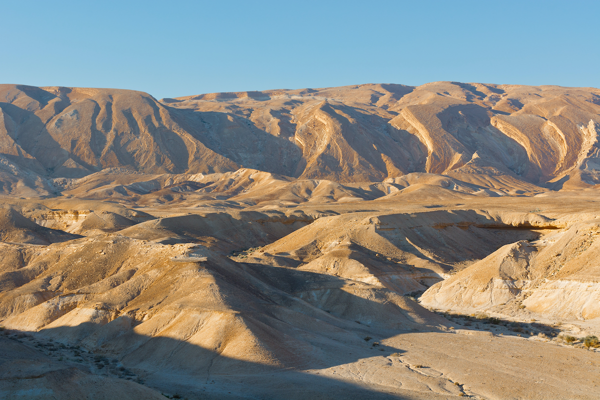 Herodium And Judean Desert Experience - 1 Day Private Tour