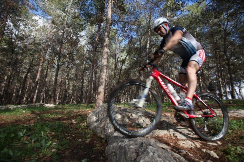 Bikingbenshemen