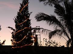 Christmas In Jerusalem