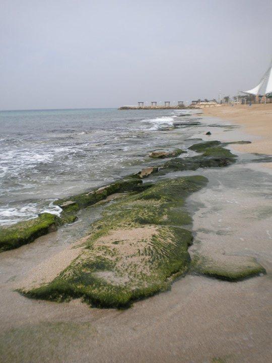 Nahariya Beach. Credit: Ashley Cohen