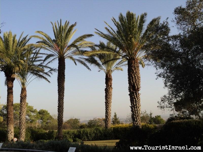 The Beautiful Gardens At Ramat Hanadiv
