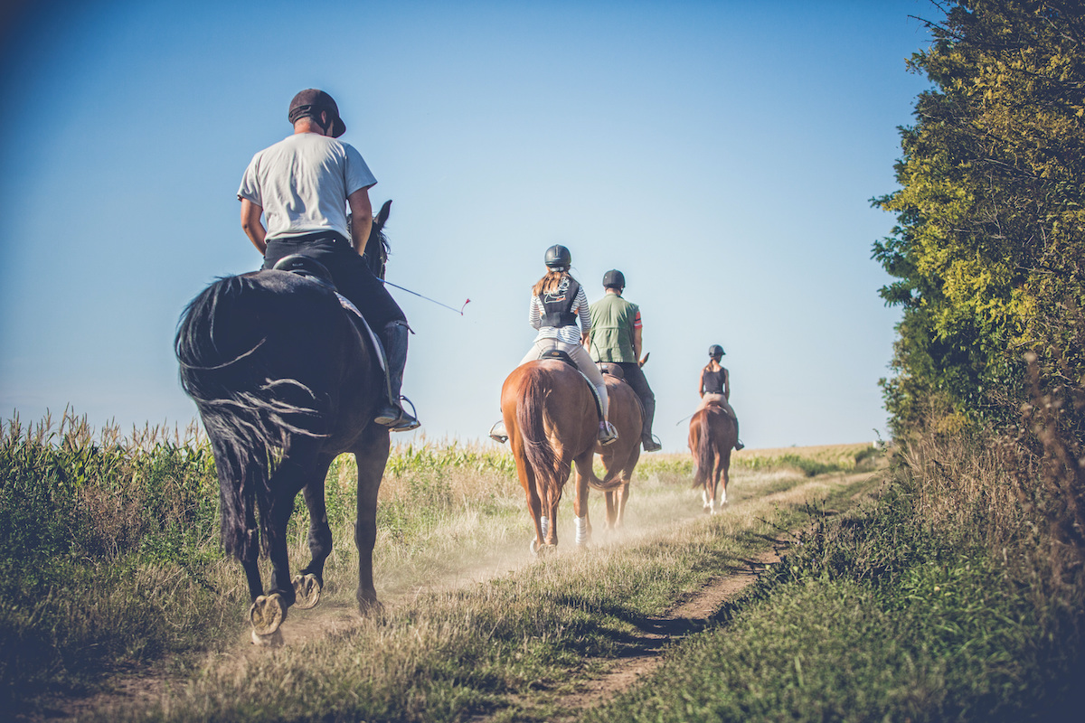 Horse Riding And Hiking Day Tour In The Galilee 3