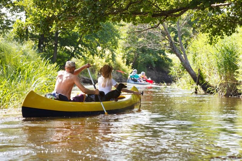 Kayaking In The River Jordan