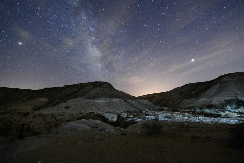 Negev Desert Night Safari Tour 1