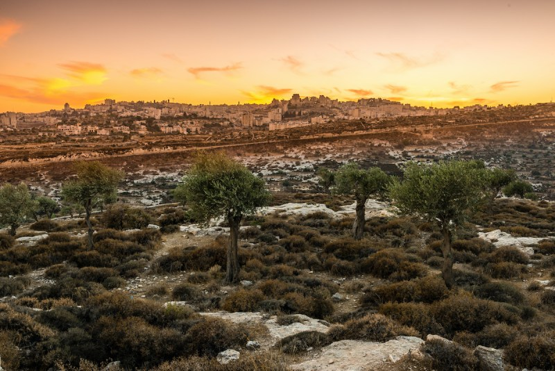 5 Day Classic Israel Tour11