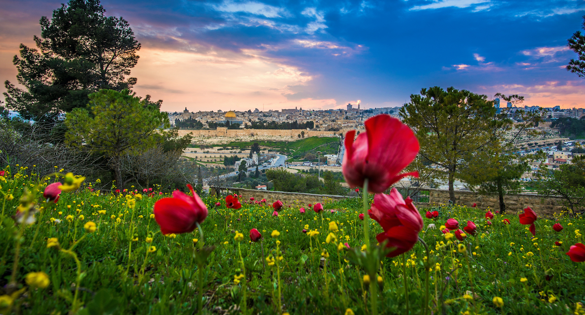 9 Day Christian Holy Land Israel Tour