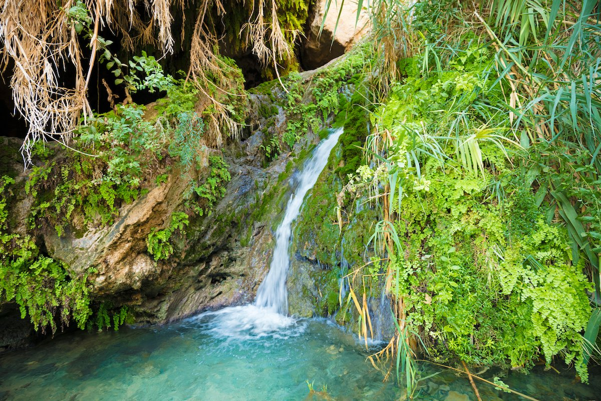 Masada, Ein Gedi, And Dead Sea Tour From Eilat - 1 Day Private Tour 5