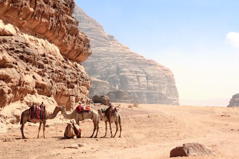 Petra & Wadi Rum 2 Day Tour From Jerusalem10