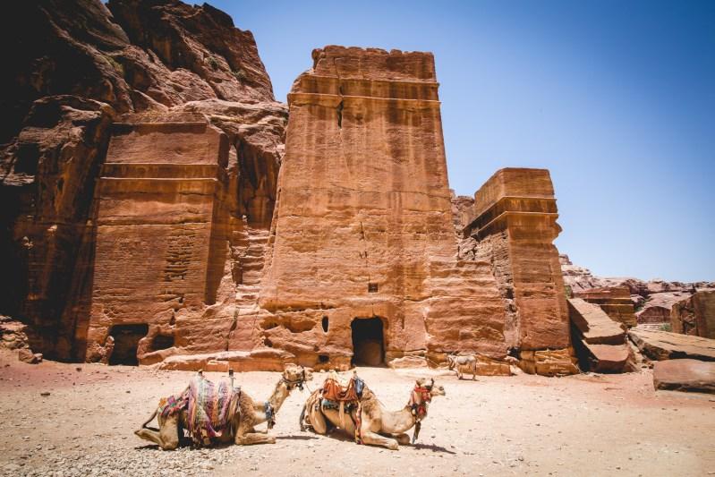 Petra, Wadi Rum, Amman & Highlights Of Jordan - 4 Day Tour From Jerusalem Or Tel Aviv 3