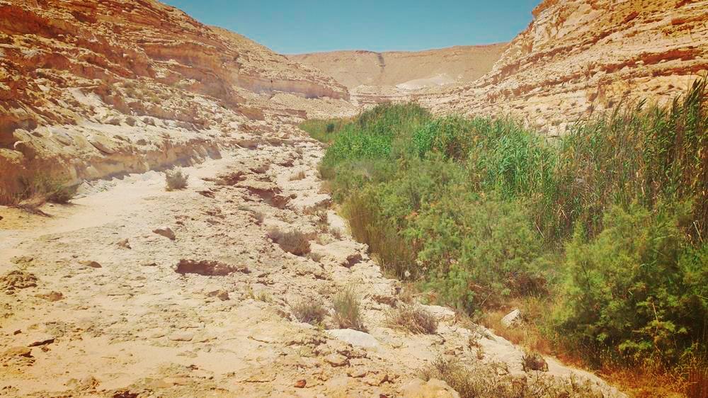 Upper Ein Akev. Image Shai Yagel