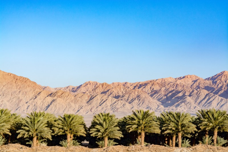 Timna Park And Desert Kibbutz Agriculture Tour From Eilat 7