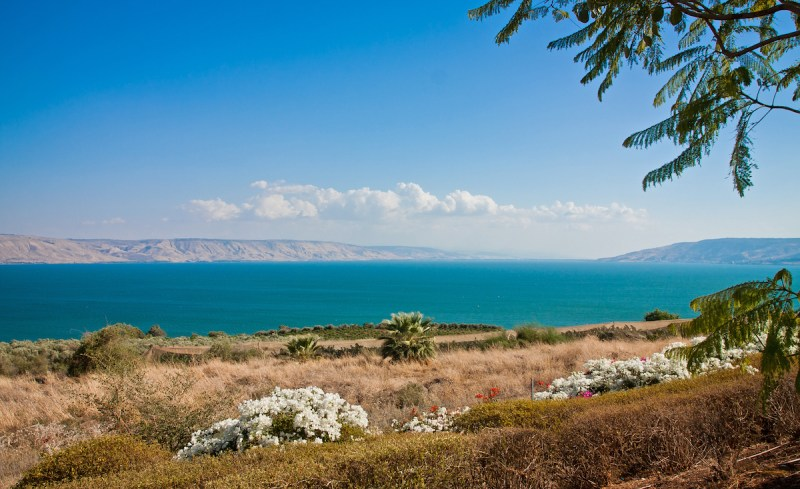 Capernaum, Yardenit And Galilee Tour