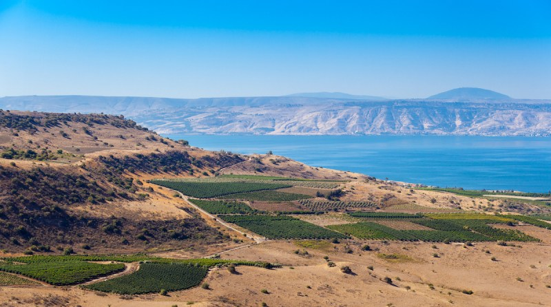 Galilee Tours