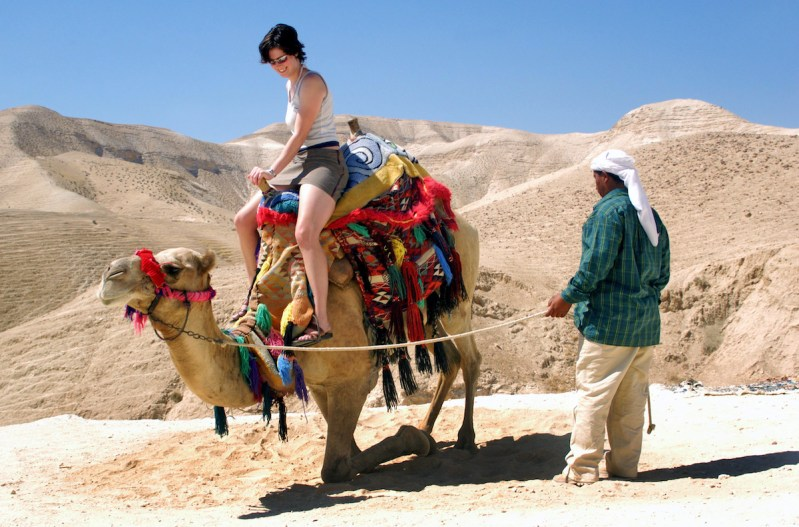 Negev Desert And Bedouin Experience Day Tour 7