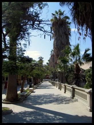 Pérou, Peru, Huiacachina,ville, randonnée, culture, hike, route, palmiers, voyage, travel, Amerique du sud