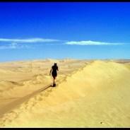Pérou voyage, la côte sud