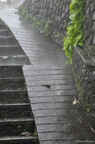 Indonésie, Bali, marche, pluie, randonnée