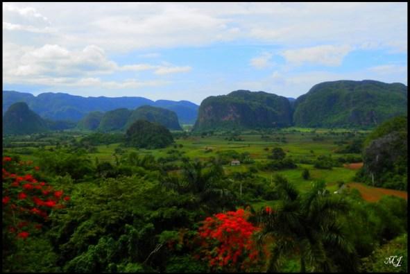Cuba, Vinales, nature