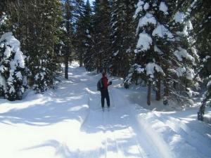 Ski de fond, Charlevoix, sentier des caps, plein air, nature, paysage, hiver, ski
