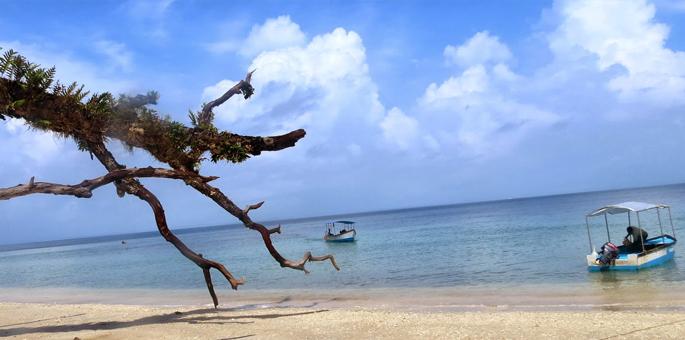 Elephanta-Beach,-Havelock-I