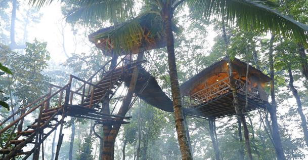 Greenwoods Resort Thekkady