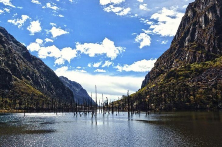 Image result for madhuri lake